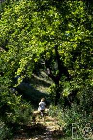 karteros ravine, a place for a pleasant walk